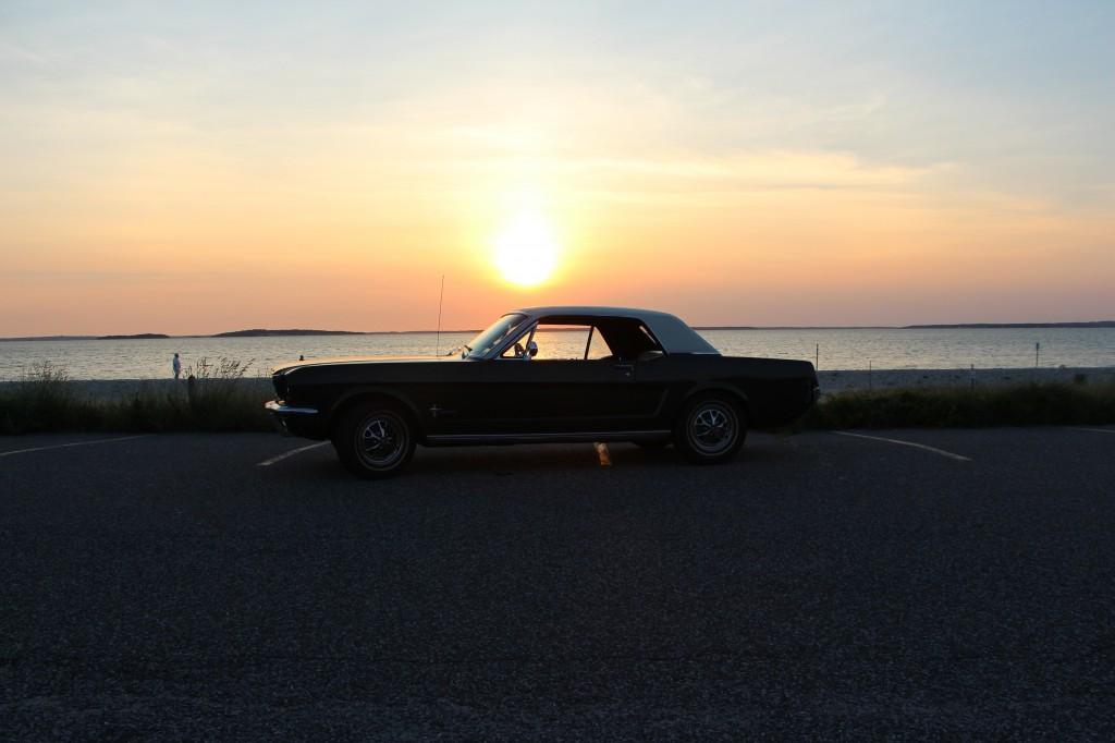 Sunset 'Stang